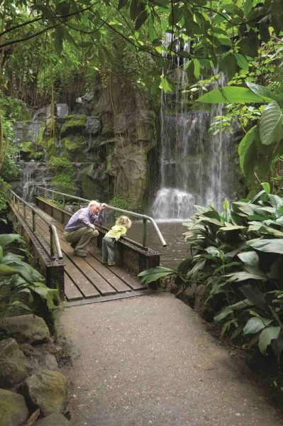 Burgers' Zoo Arnheim - Dschungel