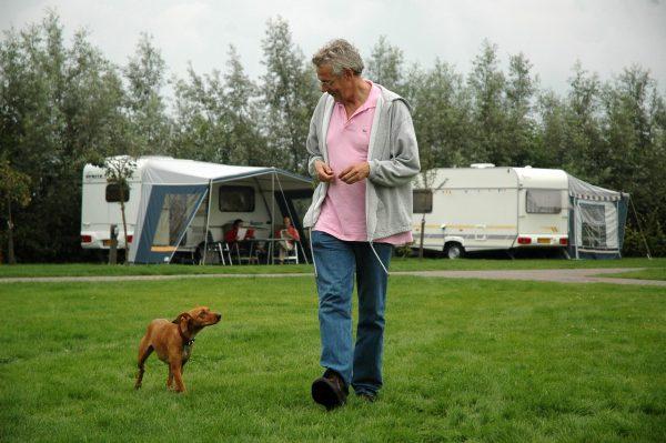Geniesse den Ferien in Holland zusammen mit deinem Hund