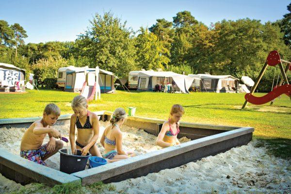 Camping mit Spielplatz - De Kleine Wolf