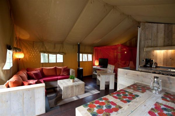 Glamping in Holland - Summer Lodge