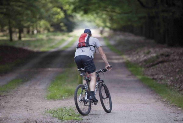 Mountainbiken Umgebung Rijssen-Holten