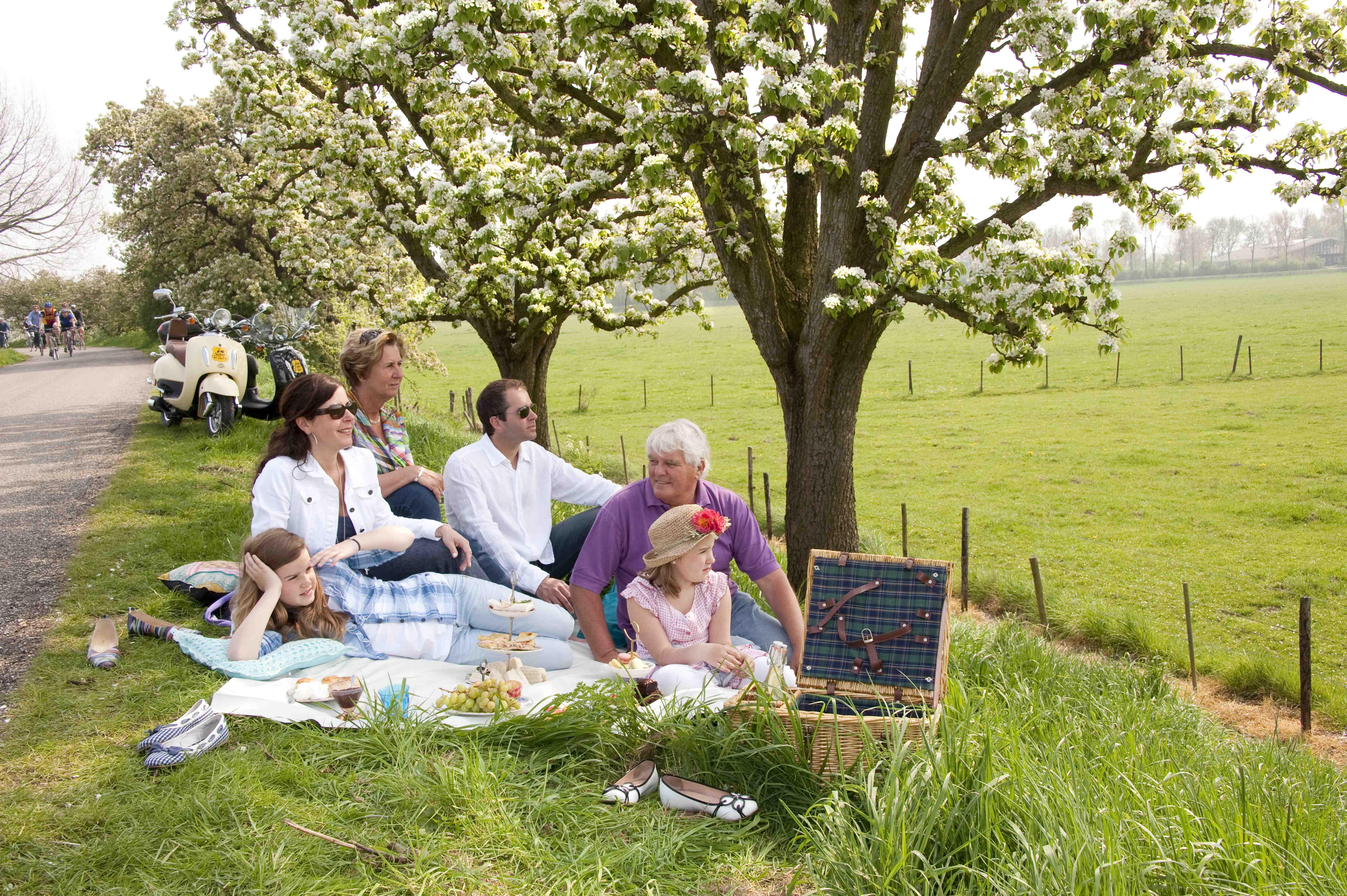 last minute angebote ostern picknick im rivierenland holland campings. Black Bedroom Furniture Sets. Home Design Ideas