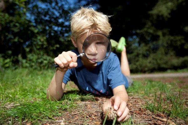 Tipps und Tricks zum Camping in Holland