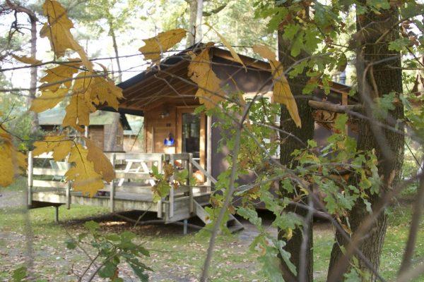 Beerze Bulten - Urlaub im Herbst