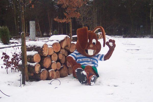 Ferienpark Beerze Bulten - Bultje im Schnee