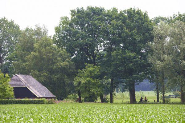 Winterswijk - Umgebung Achterhoek