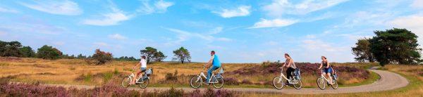 Campingplatz Emst - Nationalpark Hoge Veluwe